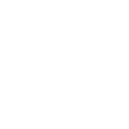 Nevada Association of Counties
